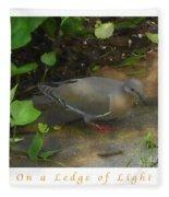 Pigeon Poster Fleece Blanket