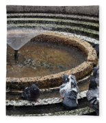 Pigeons Are In The Fountain Refreshes Fleece Blanket