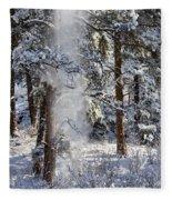 Pike National Forest Snowstorm Fleece Blanket