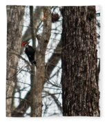Pileated Billed Woodpecker Fleece Blanket