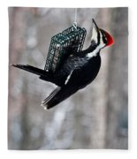 Pileated Billed Woodpecker Feeding 1 Fleece Blanket