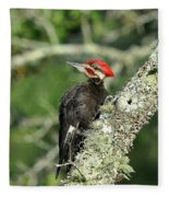 Pileated Perch Fleece Blanket
