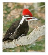 Pileated Woodpecker 6073 Fleece Blanket