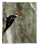 Pileated Woodpecker Looking For A Perspective Mate Fleece Blanket