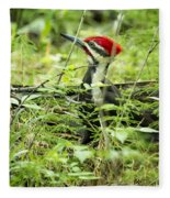 Pileated Woodpecker On The Ground No. 1 Fleece Blanket