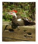 Pileated Woodpecker1 Fleece Blanket
