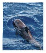 Pilot Whale 2 Fleece Blanket