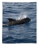 Pilot Whale 6 Fleece Blanket