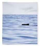 Pilot Whales 2 Fleece Blanket