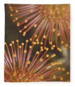 Pin Cushion Protea Fleece Blanket