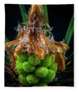 Pine Cone Focus Stack Fleece Blanket