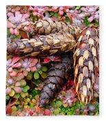 Pine Cones Art Print Botanical Garden Baslee Troutman Fleece Blanket
