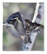 Pine Siskins Fighting 6829 Fleece Blanket