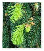 Pine Tree Branches Art Prints Conifer Forest Baslee Troutman Fleece Blanket
