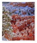 Pine Tree In Bryce Canyon Fleece Blanket