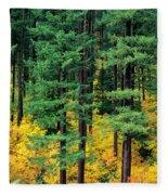 Pine Trees In Autumn Fleece Blanket