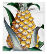 Pineapple, 1789 Fleece Blanket