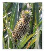 pineapple plantation in Kerala - India Fleece Blanket