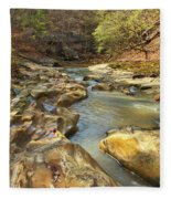 Piney Creek Ravine Revisited 1 Fleece Blanket