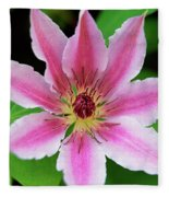 Pink And White Clematis Fleece Blanket