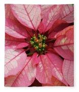 Pink And White Poinsettia Fleece Blanket