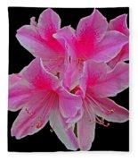 Pink Azaleas Fleece Blanket