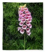 Pink Bell Flowers. Foxglove 02 Fleece Blanket