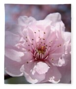 Pink Blossom Nature Art Prints 34 Tree Blossoms Spring Nature Art Fleece Blanket