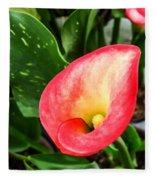 Pink Calla Lily Fleece Blanket
