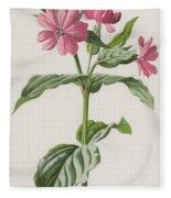 Pink Campion Fleece Blanket