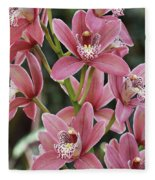 Pink Cymbidium Orchid #3 Fleece Blanket