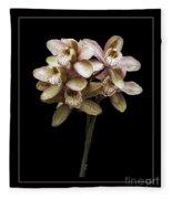 Pink Cymbidium Orchid Fleece Blanket