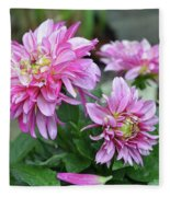 Pink Dahlia Flowers Fleece Blanket