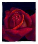 Pink Delight Fleece Blanket