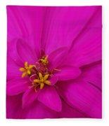 Pink Fleece Blanket