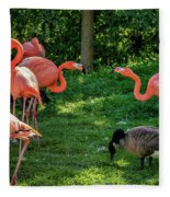Pink Flamingos And Imposters Fleece Blanket