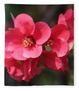 Pink Flowering Quince Fleece Blanket