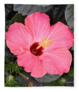 Pink Hibiscus II Fleece Blanket