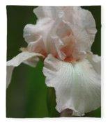 Pink Iris Fleece Blanket