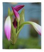 Pink Lily Bud Fleece Blanket