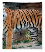 Pink Nosed Tiger Fleece Blanket