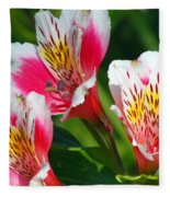 Pink Peruvian Lily 2 Fleece Blanket