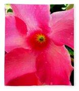 Pink Pinwheel Fleece Blanket