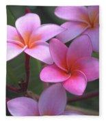 Pink Plumeria Fleece Blanket