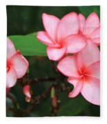 Pink Plumerias Fleece Blanket