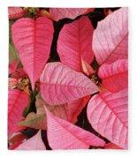 Pink Poinsettias Fleece Blanket