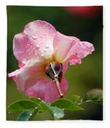 Pink Rose In The Rain 2 Fleece Blanket