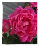 Pink Roses 2 Fleece Blanket