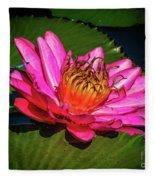 Pink Summer Water Lily Fleece Blanket