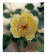 Pink Tipped Yellow Rose Fleece Blanket